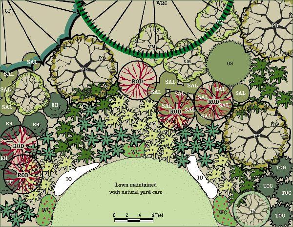 20 best Northwest Gardens images on Pinterest Garden ideas