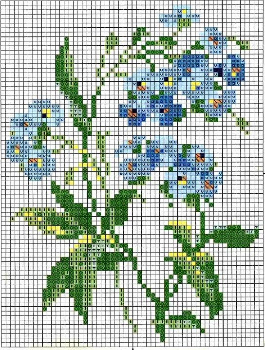 forget me nots chart