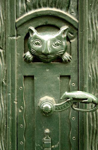 cat door knob