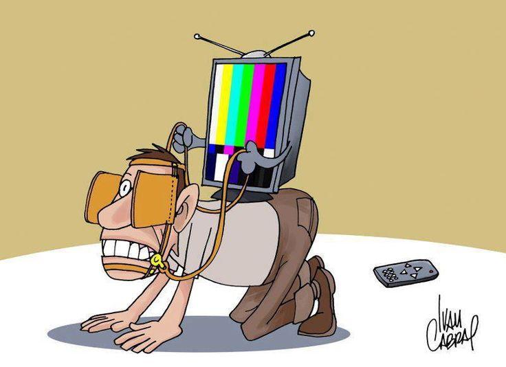 Burros televisivos