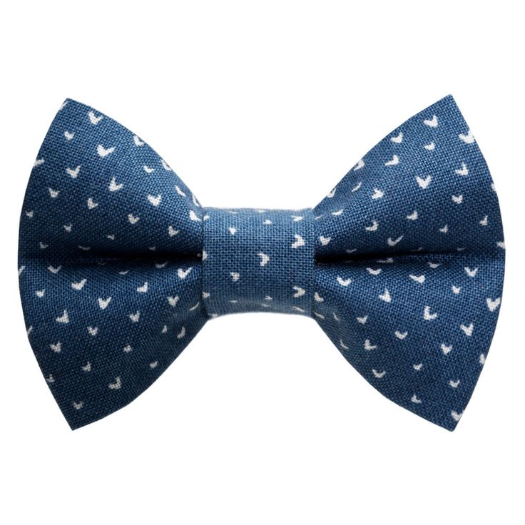 24 best New Cat Bow Ties images on Pinterest | Bow ties ...