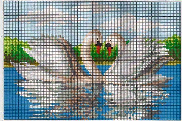 mXzJsxr-dqs.jpg (604×400)