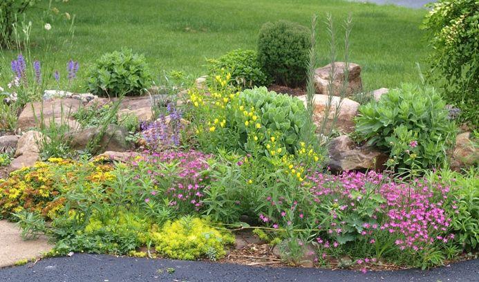 Rock Gardens | list of plants we grow in the main rock garden...
