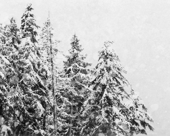 winter photography ski lodge decor black and white photograph oversized wall art snow picture tree photo christmas picture