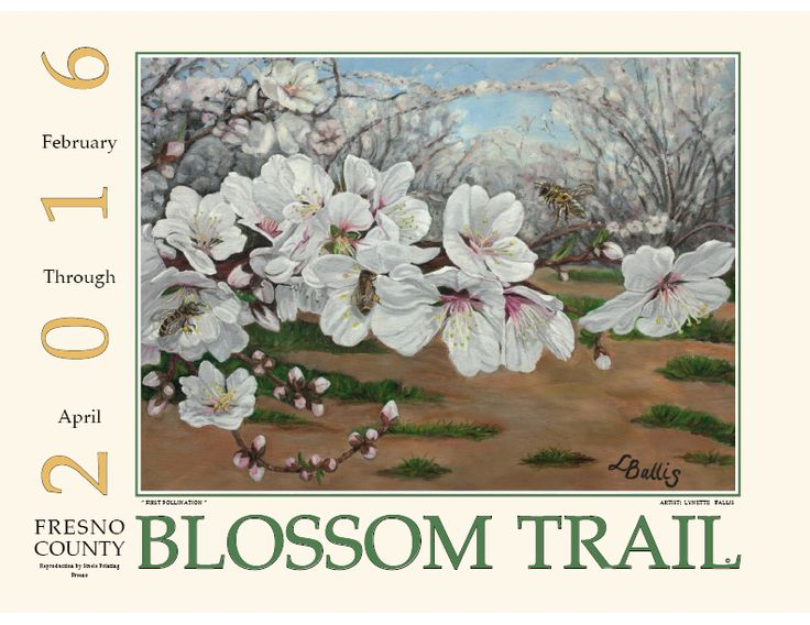 Fresno County Office of Tourism - Blossom Trail