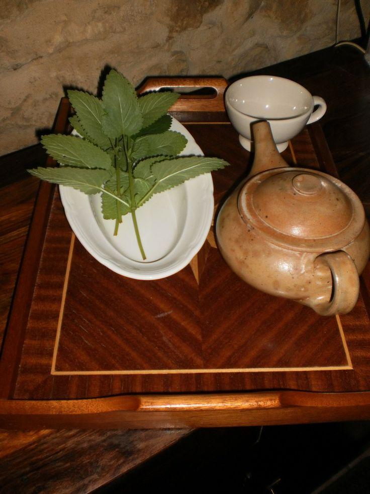 thee van verse citroenmelisse