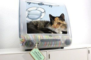 Cat bed made from old iMac  #upcycle