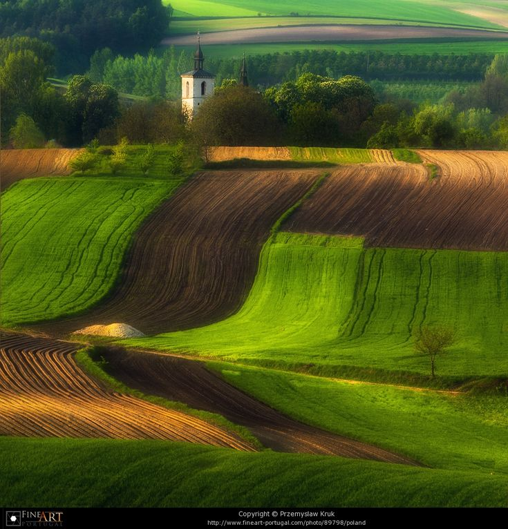 """Polish countryside: one of the reasons Hitler pushed into Poland (and the Ukraine) wasn't just for reasons of liebensraum, or additional living space, but bc it was rich in resources — one of the """"bread baskets"""" of Europe."""