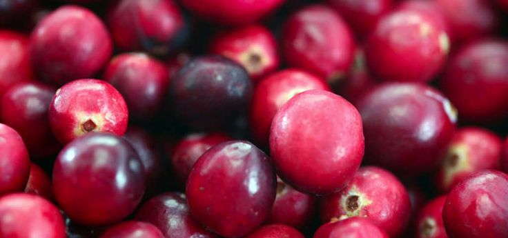Michigan's only historic cranberry farm. We offer for your enjoyment farm tours and a farm market. The cranberry gift shop is located in the same little building that housed the original Whitefish Point Post Office. Paradise MI