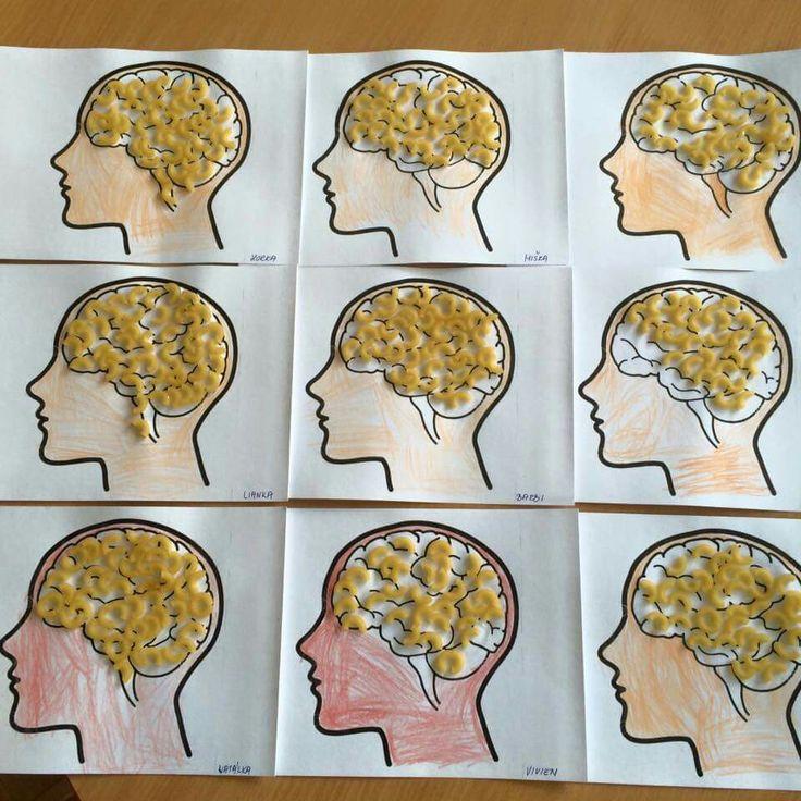 Mozog