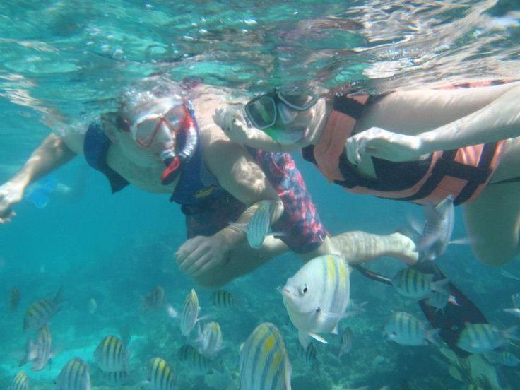 2 Excursions Not to Skip in Playa del Carmen #xplor #bluevenado