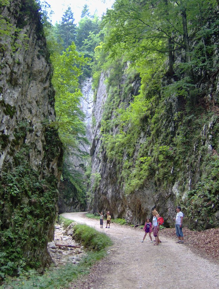 Zarnesti Canyon, Piatra Craiului Mountains, Romania