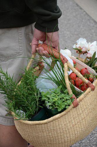 farmers markets http://frenchcuisineandwinetours.com/french-market-basket-shoppe