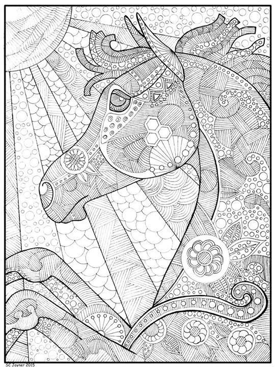 Amazing horse colouring in page