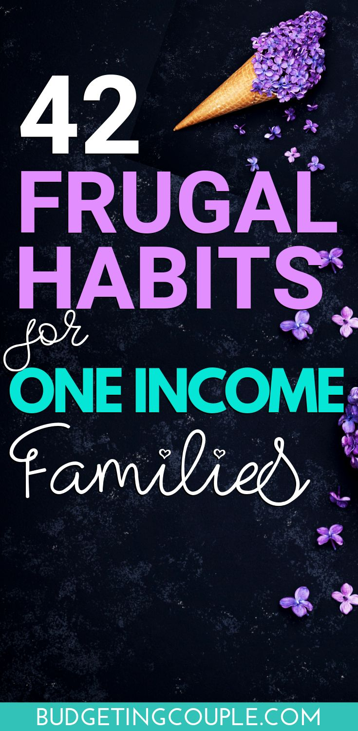 42 Frugal Habits for One Income Families