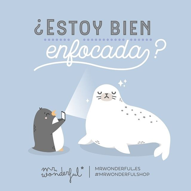 ¿Se me ve bien? Am I in proper focus? Can you see me right? #mrwonderfulshop #quotes #seal #pic #photograph