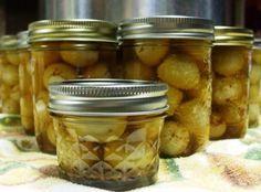 Cajun Pickled Quail Eggs Recipe
