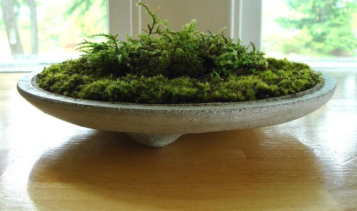 Zen Concrete Handmade Moss Bowl Terrarium Centerpiece. $22.99, via Etsy.