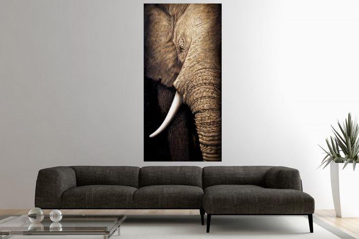 Obraz ELEPHANT II