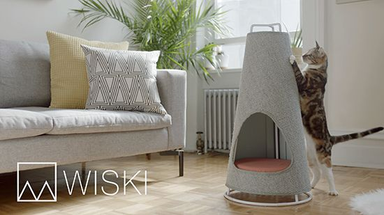 The Cone by WISKI Now Available on Kickstarter • hauspanther
