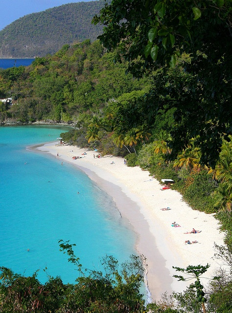 St. John Trunk Bay - our favorite place!
