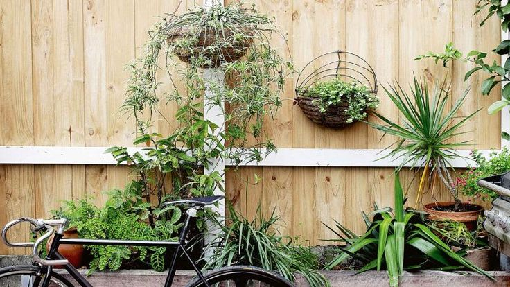 How To Create The Perfect Small Garden