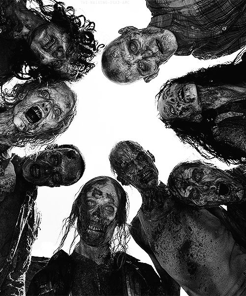 «OPEN RP» Willow: I look in back of me. Suddenly, out of no where, a horde of zombies were running towards me. I scream. Run Gracie, run!