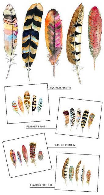Feather prints - Graphic design inspiration