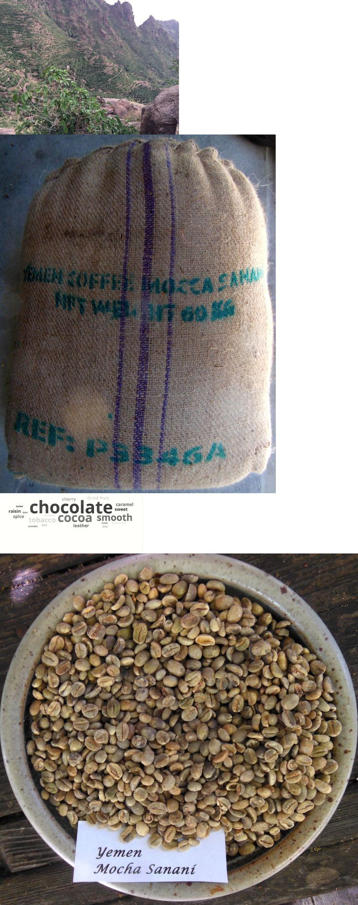 Coffee Beans 38179: 4 Lbs Yemen Mocha Sanani Un-Roasted Green Coffee Bean Only Ones On Ebay -> BUY IT NOW ONLY: $45 on eBay!