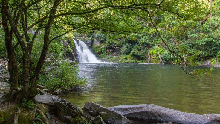 5 Incredible Cades Cove Hiking Trails You Will Love