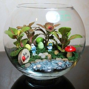 My First Blog!: Terrariums~ Seni taman dalam kaca