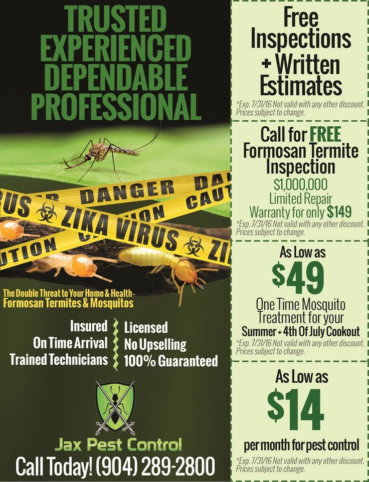 Formosan Termites your home may have them - FREE INSPECTION - Call 904.289.2800  https://t.co/FADpEwZKWx #Jax https://t.co/v5fnHmIALJ