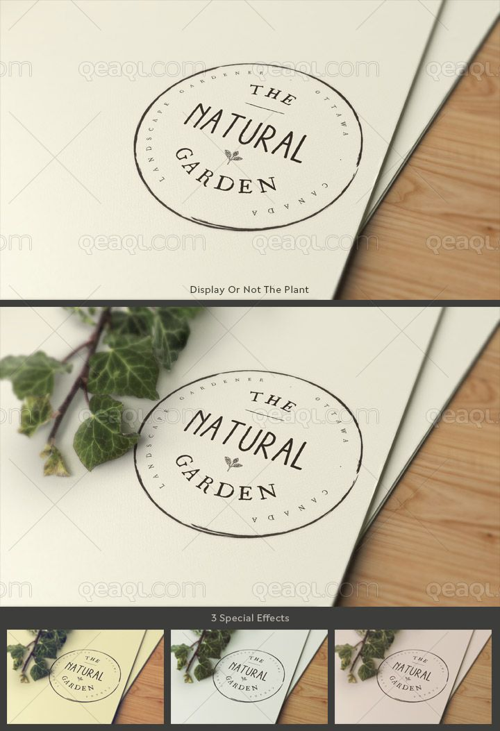 Logo mock up on textured paper with pine wood and a plant called ivy. You can display or not the plant according to your specific needs. 3 special effects are available. Change easily the logo via smart object.