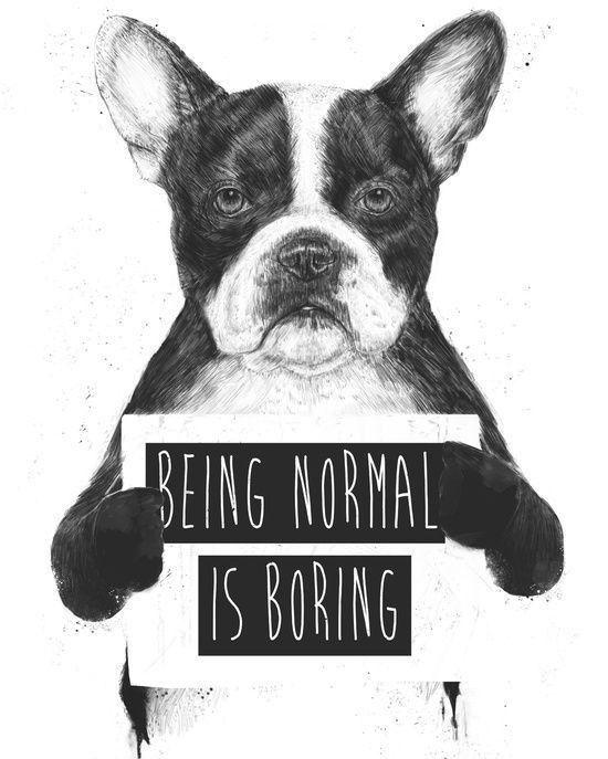 """""""Ser normal é chato"""". E não tem nada mais ousado do que ser você mesma e ser autêntica. O que significa ter uma vida autêntica? Uma possível resposta: é acordar a cada dia alinhada com seus valores prioridades e com o seu verdadeiro eu."""