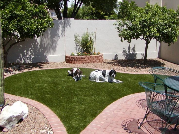 Garden Ideas For Dogs 53 best dogscaping images on pinterest | backyard ideas, garden