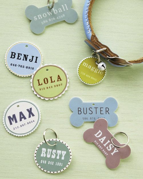 With these @ms_living downloadable templates and easy-to-find materials, you can create a customized ID tag for your pet. #MarthaStewartPets #DIY #petproject