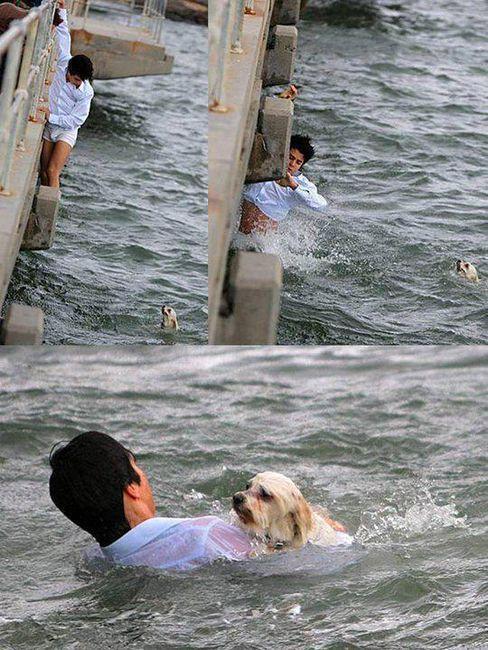 This man: This Man, Puppies, Inspiration, God, Heroes, Dogs, Faith, Bridges, Animal