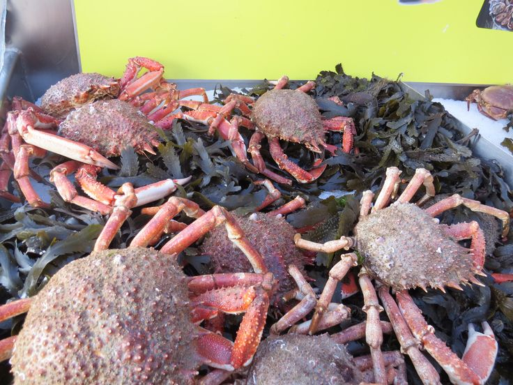 Celebrity Cruises - Aboard Celebrity Eclipse - Crabs on the market