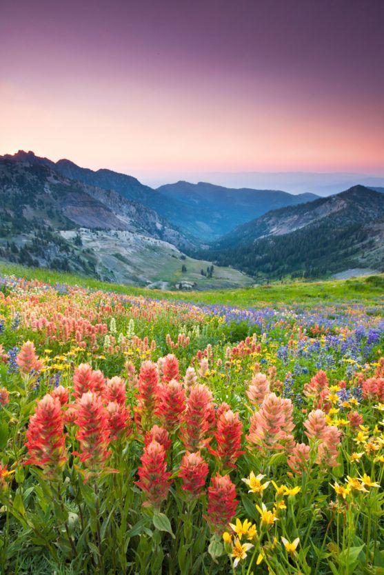 Pretty Utah.