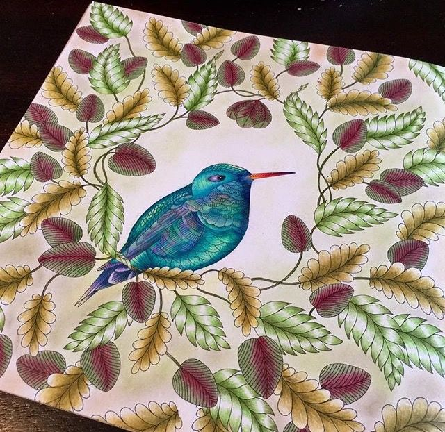 Colouring In Adult Coloring Books Prismacolor Animal Kingdom Johanna Basford Tropical Wonderland Animals And Pets