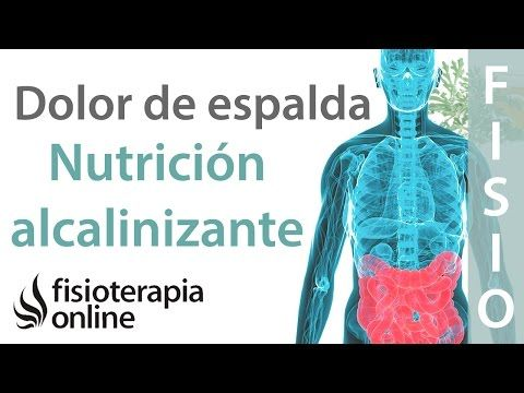 Nutrición alcalinizante y dolor de espalda, muscular y articular - YouTube