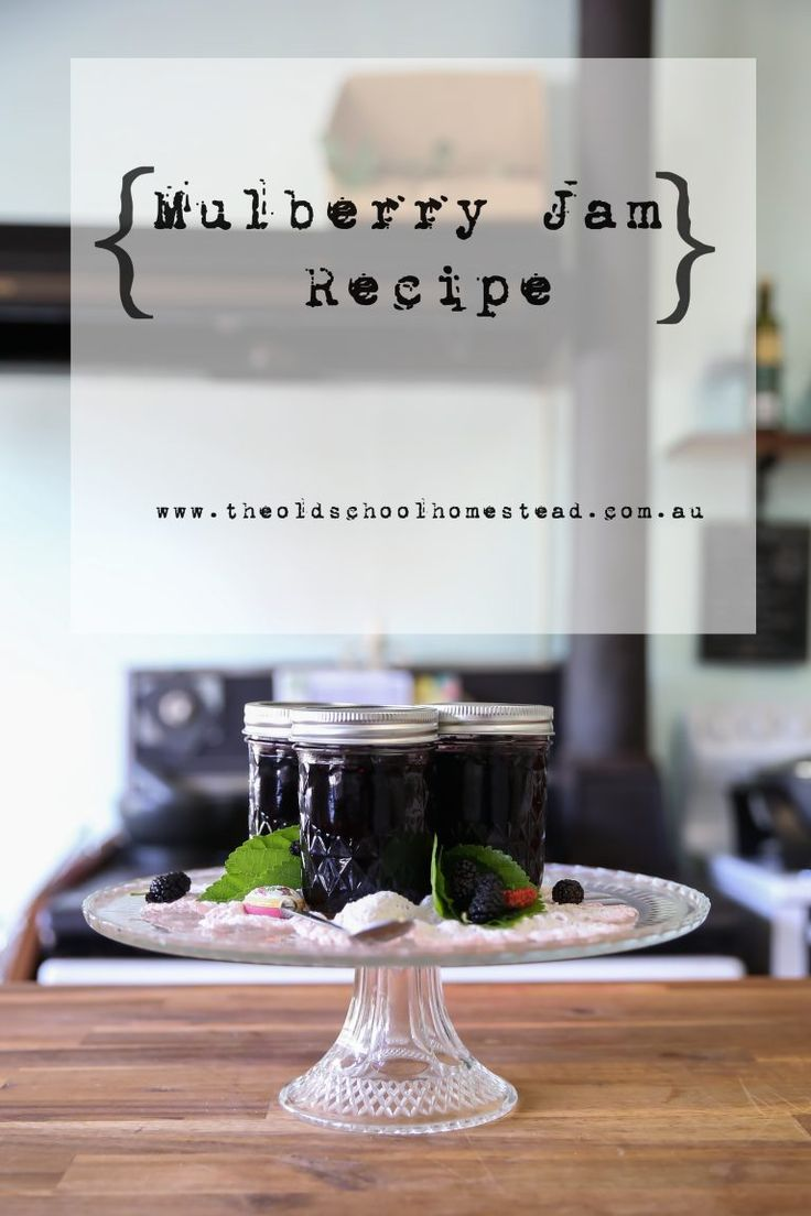 Our First Harvest and Recipe: Mulberry Jam.