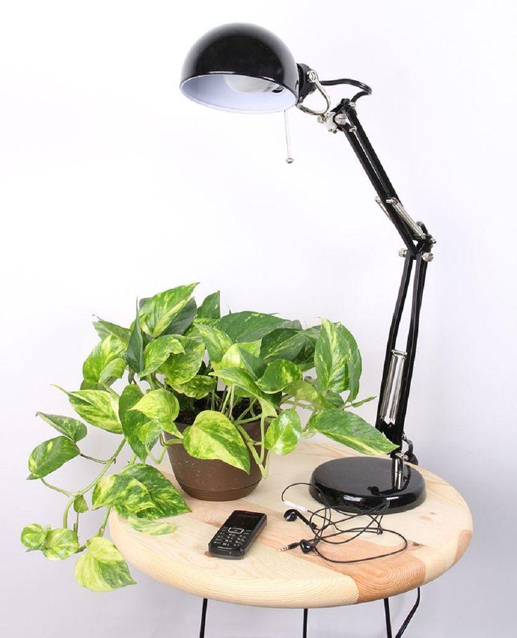 64 best bedroom design decor furniture images on pinterest for Best air purifying plants for bedroom
