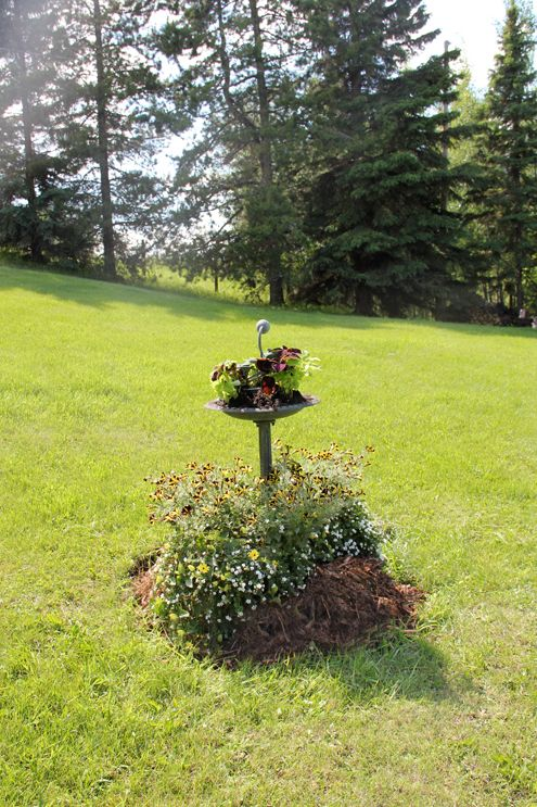 hide a septic tank cover with a removable garden