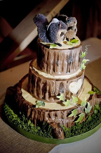 Best 25 Squirrel Cake Ideas On Pinterest Tree Stump