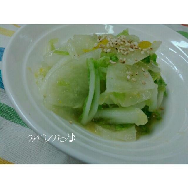 ♪白菜3枚を4等分してから繊維に沿って棒状に切る ♪3cmほどのお大根はいちょう切り ♪白菜とお大根は塩をして揉み洗ってよく絞る→柚子の皮を千切りにして和えておく ♪野菜にゆず味噌大さじ2ほど+昆布茶少々(あれば)+柚子の果汁少々を混ぜる  サラダのようにパリパリ食べれるよ♪ - 59件のもぐもぐ - お大根と白菜のゆず味噌和え♪(作り方はコメント欄よん♪) by key♪