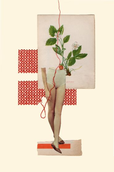Rhed Fawell - 'Strawberry' - Collage 2016
