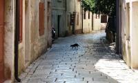 Old city street - Porec Croatia