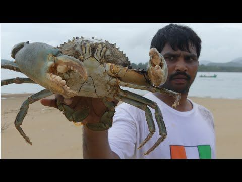 BIG CRAB CAUGHT AND COOKING IN GOA BACKWATER | CRAB CURRY  MAKING | SEAFOOD RECIPES - YouTube
