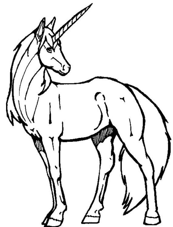 Realistic Unicorn Coloring Pages Kids Learning Activity Unicorn Coloring Pages Animal Coloring Pages Curious George Coloring Pages